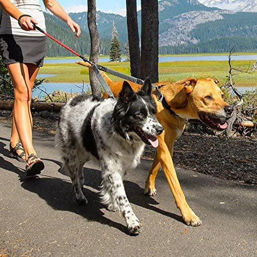 RUFFWEAR - Double Track Coupler: Amazon.es: Productos para mascotas