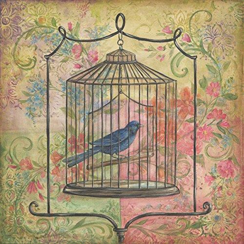 Kitchen Art Lebanon: 2 Floral Vintage Bird Cage Art Prints Posters Retro