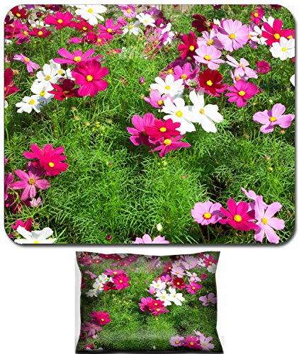 Luxlady Mouse Wrist Rest and Small Mousepad Set, 2pc Wrist Support design IMAGE: 34664099 Cosmos sulphureus Cav vibrant colors blooming in the -