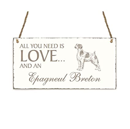 Placa decorativa, « All You Need is Love And A spaniel ...