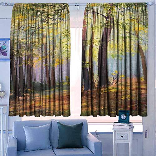Lovii Rod Pocket Drapes and Curtain 42