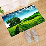 JANNINSE House large doormat configuration, Thailand sunlit rice fields and green trees blue sky, original and durable rubber mat, suitable for indoor and outdoor waterproof, easy to clean, low rug