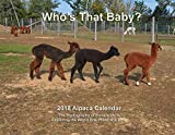 Alpaca Calendar 2018 (Maine Alpaca Photos)