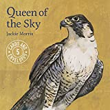 Jackie Morris Queen of the Sky Notecards Pack 1