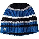 Smartwool Mens Warmest Hat (Arctic Blue, One Size)