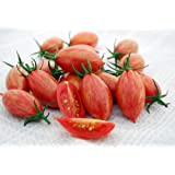 【SEED】Heirloom Tomato® Pink Tiger エアルーム・トマト・ピンク・タイガー(20 seeds)*登録&契約栽培品種