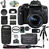 Canon EOS Rebel T6i / 750D DSLR Camera Bundle with Canon EF-S 18-55mm IS STM Lens + Canon EF 75-300mm III Lens + 64GB SDXC Memory Card + Accessory Kit - International Version