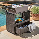 Christopher Knight Home Ravenna Outdoor Resin Wicker Bar Cart with Metal Frame