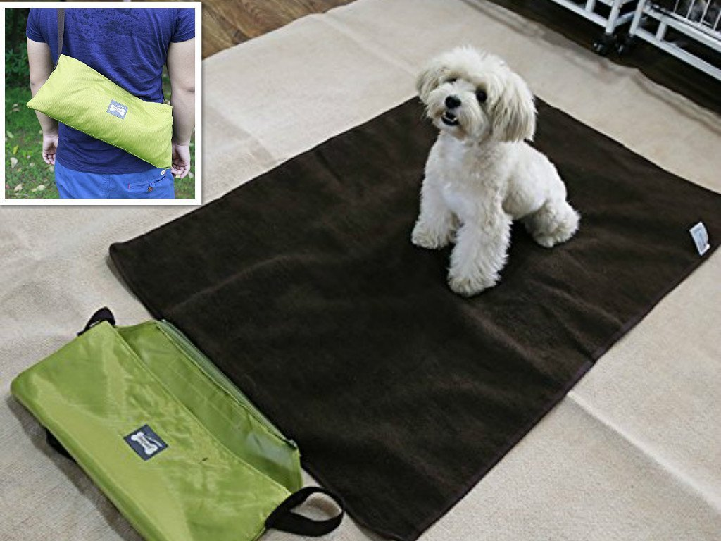 Sun Glower Coperta delle forniture dell'animale Letto per cani da compagnia Portatile Outdoor Indoor Impermeabile Coccola Comfort Coperta Reversibile Design Pet Dog Coperta da viaggio Sleeping Mat I