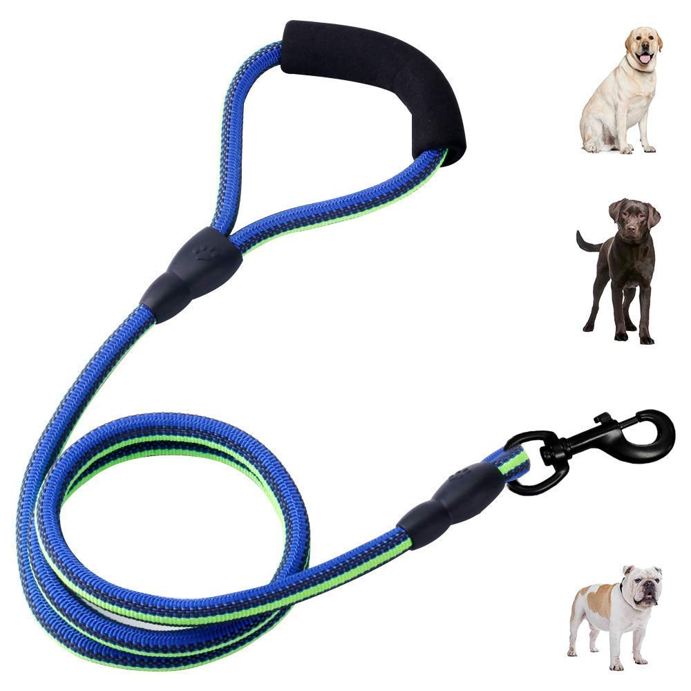 Heavy Duty Dog Leash Durable 4 FT Nylon Rope Dog Leash with Soft Handle Special Non-Slip Design Dog Training Lead for Large Medium Small Dogs (bluee&Green(Non-Reflective))