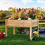 Best Choice Products 46x22x30in Raised Wood Planter Garden Bed Box Stand for Backyard, Patio - Natural 9 SPACIOUS GARDENING BED: Designed with a nearly-4-foot-long bed deep enough to ensure your plants and vegetables can breathe and grow healthy DURABLE COMPOSITION: Made of 0.75-inch-thick, weather-resistant Cedar wood, this bed is built to last through the seasons ERGONOMIC STRUCTURE: Stands 30 inches tall, making it perfect for those who struggle to bend down or lean over while gardening