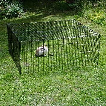 animalmarketonline cerca jaula Valla Caseta para perros gatos Conejos Cavie L 216 x p 116 x H 65 cm: Amazon.es: Productos para mascotas