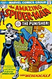 Amazing SPIDER-MAN #129 (1st Appearance PUNISHER Rare German Edition)