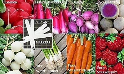 Bulk 5 Radish Seeds Survival Seeds 1,550 Seeds Upc 646263360743 + 8 Plant Markers