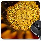 MSD Suqare Mousepad 8x8 Inch Mouse Pads/Mat design 19471146 Close up view of the beautiful Daybreak Red Stripe Gazania Gazania rigens flower