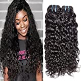 Iwish Hair Brazilian Water Wave Virgin Human Hair 4 Bundles Grade 8A Unprocessed Hair Weave No Shedding No Tangle Can be Dyed (10 10 10, Natural Black)