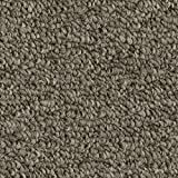 Cheap 12'x20′ Russett – WEAVERS GUILD – Custom Carpet Area Rugs & Runners – Berber Style in Modern Earth Trones | 15 Colors to Choose From