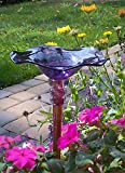 Purple Hand Blown Glass Butterfly Feeder with 36'' Copper Stake