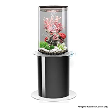 BiOrb TUBE 30L en negro con iluminación LED MCR y soporte para acuario 105: Amazon.es: Productos para mascotas