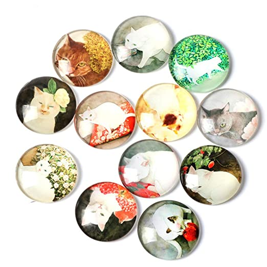 Imanes de cristal para refrigerador, 20 piezas de divertidas ...