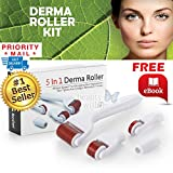Derma Roller Kit Derma Roller Kit By Beauty Within 0.2 0.5 1.0 1.5 Derma Roller Derma Kit 5 in 1 Stay Beautiful and Forever Young