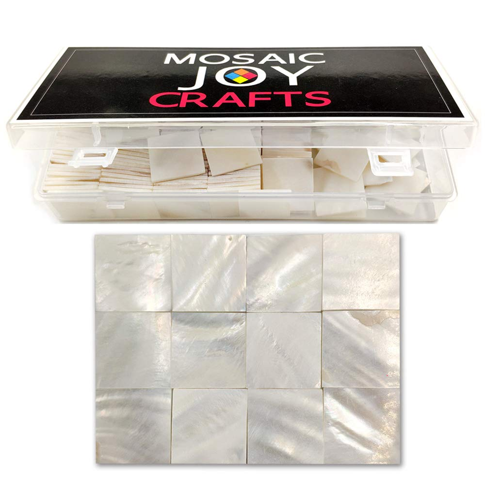 Mosaic Tiles Mother of Pearl Mosaic Supplies for Crafts White Mosaic Pieces for DIY Crafts Pieces 0.8X0.8 inch by Moasic Joy (170 pcs, Pure White Square)