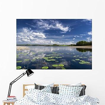 amazon wallmonkeys wm71845 lake view with water lilies mazury peel