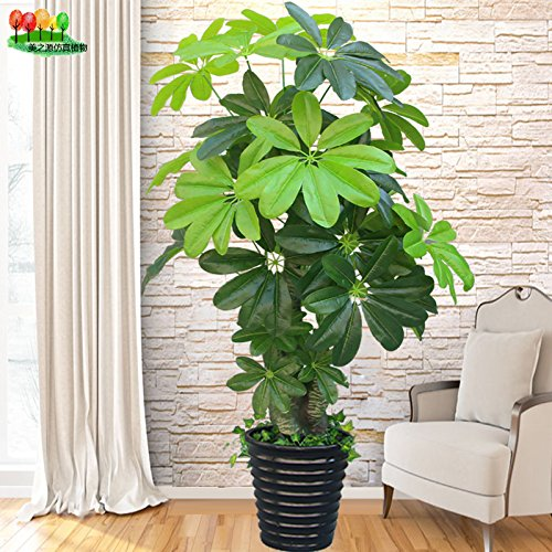 The fake tree Pachira living room decorative tree large floor potted bonsai plants simulation plant plastic flowers,Gold and jade fill the hall -- abundant wealth or many children in the family