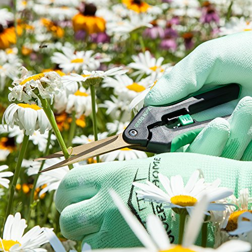 Garden Pruning Shears and Snips Set – 8.5'' Carbon Steel Bypass Hand Pruner & 7'' Titanium Coated Stainless Steel Straight Tip Trimming Scissors + Protective Gloves. Perfect Tools Set For Gardening. by Vivero Home (Image #7)