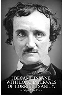 com i became insane intervals horrible sanity edgar allan i became insane intervals of horrible sanity edgar allan poe poster 12x18