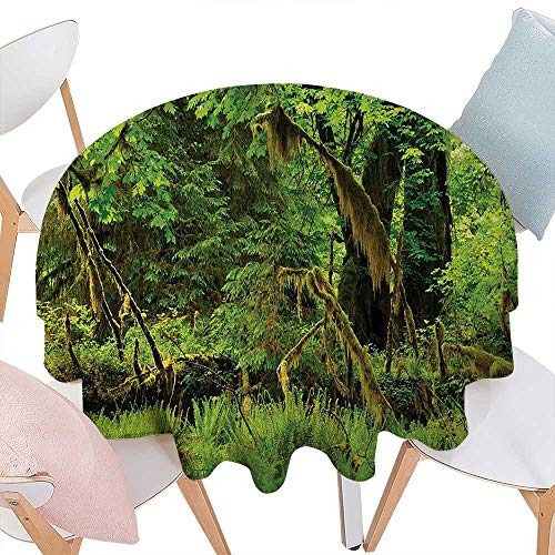 cobeDecor Rainforest Customized Round Tablecloth Trees with Moss Natural Paradise Silence in The Wild Nature Relaxation Illustration Round Tablecloth D54 Green