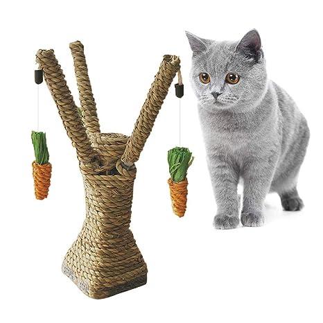 Hifuture - Tabla de rascar para Gatos, Cuerda de sisal ...