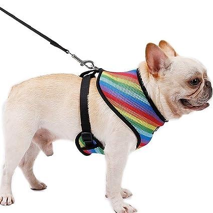 QYJpB Cofre Ajustable para Mascotas Chaleco para El Pecho Arneses ...