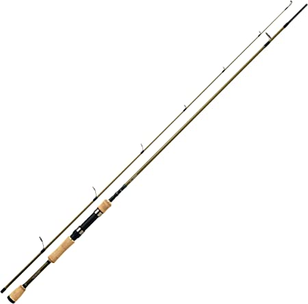 Daiwa CAÑA Spinning LEGALIS - 100, 210, 2, 8, 110, 2-8: Amazon.es ...