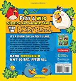 Angry Birds Playground: Question & Answer Book: A Who, What, Where, When, Why, and How Adventure (National Geographic Kids)
