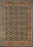 Safavieh Mahal Collection MAH623K Traditional Oriental Light Blue and Red Area Rug (9′ x 12′) Review