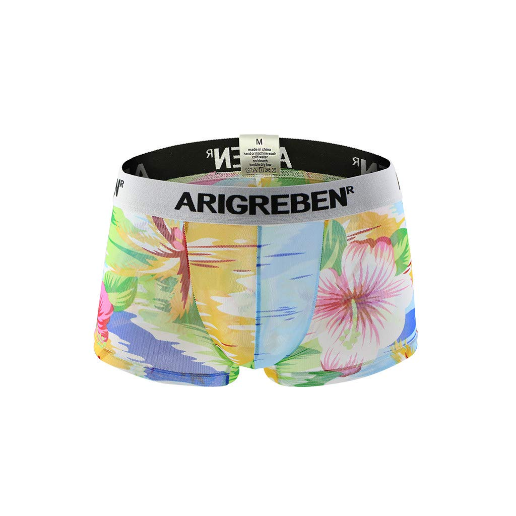 Quelife Mens Boxer Briefs Breathable Underwear Raised Print Arigrebren Sexy Four-Corner Shorts (C,M)