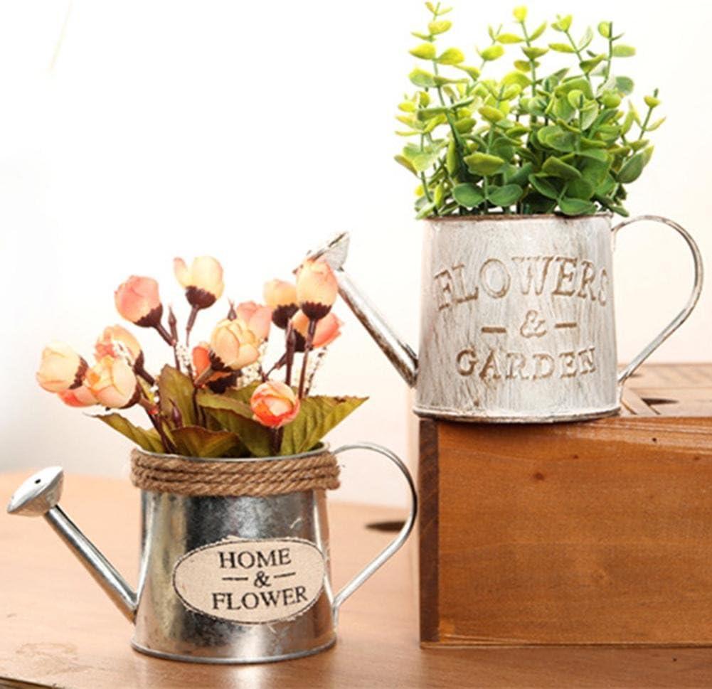Dire-wolves Vintage Pot de Fleurs Pot de Fleurs Artificielles Plante en M/étal Seau Bonsa/ï Plante Succulente pour Jardin Vertical Pots Home D/écoratif Ornement Craft Arrosoir M/étal Pot
