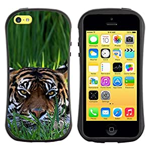 ZooCases Premium Shockproof Hybrid Case Apple iPhone 5C - Clever Tiger -