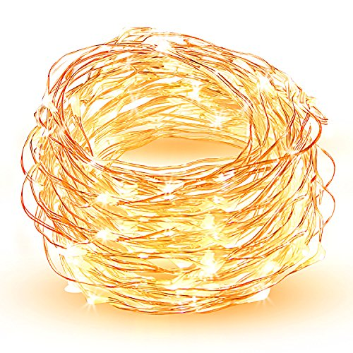 LED String Lights, HOPDAY Copper Wire Lights For Seasonal Decorative Gardens Christmas Holiday Wedding Parties Home Bedroom –Warm White (100 leds 33 ft, low voltage plug) from HOPDAY