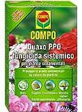 Compo 1441402005 Duaxo Fungicida per Piante, 100 ml, Trasparente