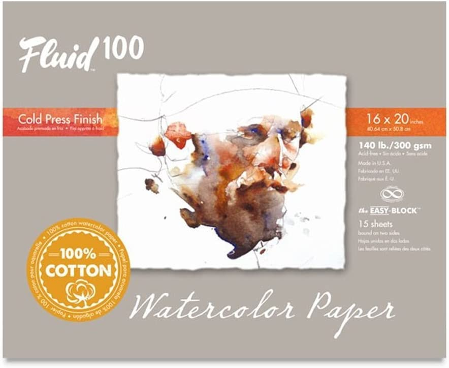 Speedball Art Products 812722 Fluid 100 Artist Watercolor Paper 140 lb Hot Press 100/% Cotton Natural White 10 Sheets 11 x 14-InchPochette