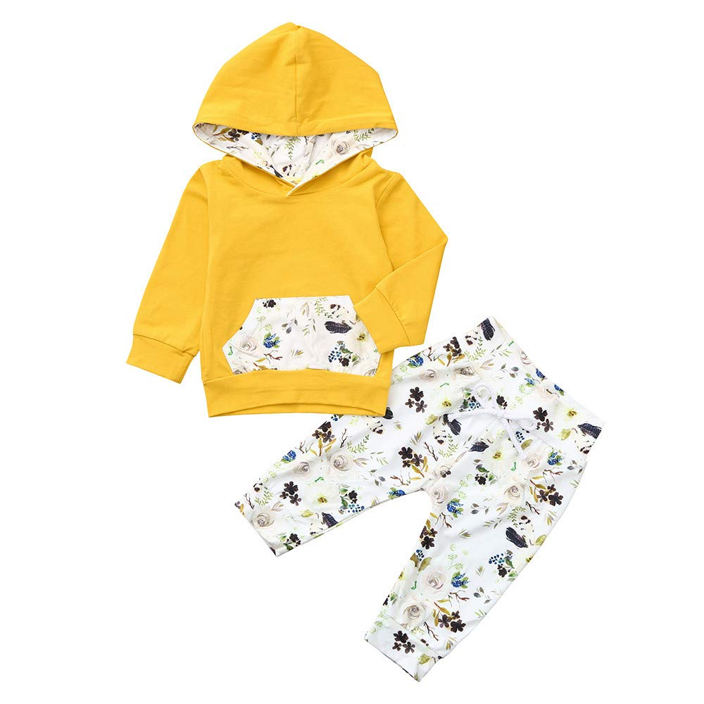 Boys Girls Outfits Set,0-24 Months Infant Baby Long Sleeve Hooded Tops Floral Print Pants (18-24 Months, Pink): Electronics