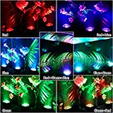 Pond Lights Submersible Lights [Set of 4] with