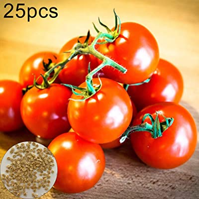 Fruit Seeds for Planting, 25Pcs Tomato Seeds Garden Nutritious Vegetable Fruit Bonsai Yard Balcony Plant - Tomato Seeds : Garden & Outdoor