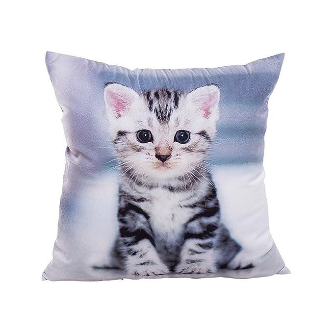 Logobeing Funda Cojines Impresión de gato Fundas de almohada poliéster sofá coche cojín decoración del hogar (A): Amazon.es: Ropa y accesorios