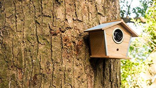 Brinno MAC200DN Portable Motion Activated Wireless Outdoor Security Camera (Black) by Brinno (Image #10)