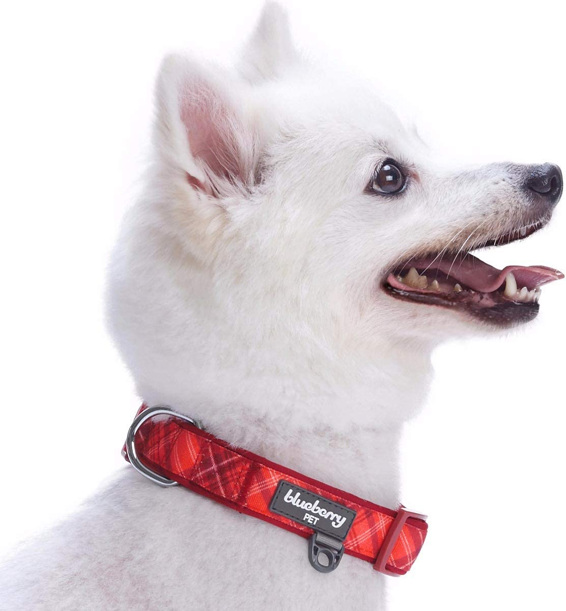 Small Adjustable Collars for Dogs Neck 12-16 Blueberry Pet Cardinal Red Nautical Sailboat Designer Tie Dog Collar