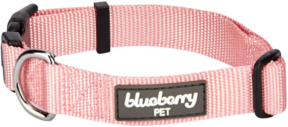 Blueberry Pet Essentials 22 Colors Classic Collars