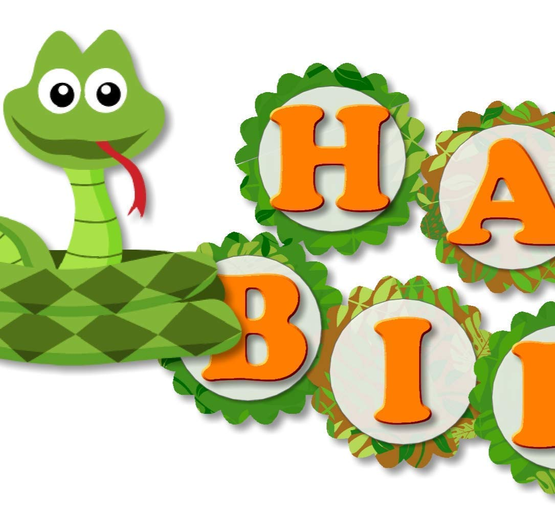 Phenomenal Amazon Com Personalized Reptile Snake Birthday Party Decorations Funny Birthday Cards Online Aboleapandamsfinfo